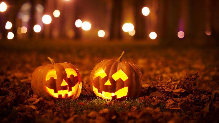 Dos calabazas talladas en Halloween